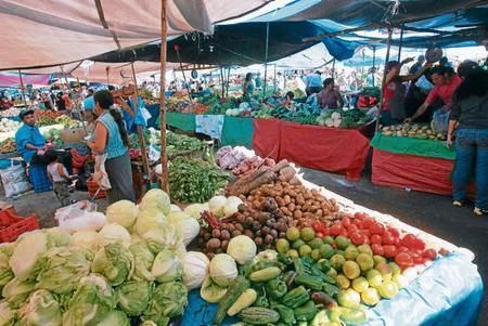 Precios de canasta básica en Ferias del agricultor.