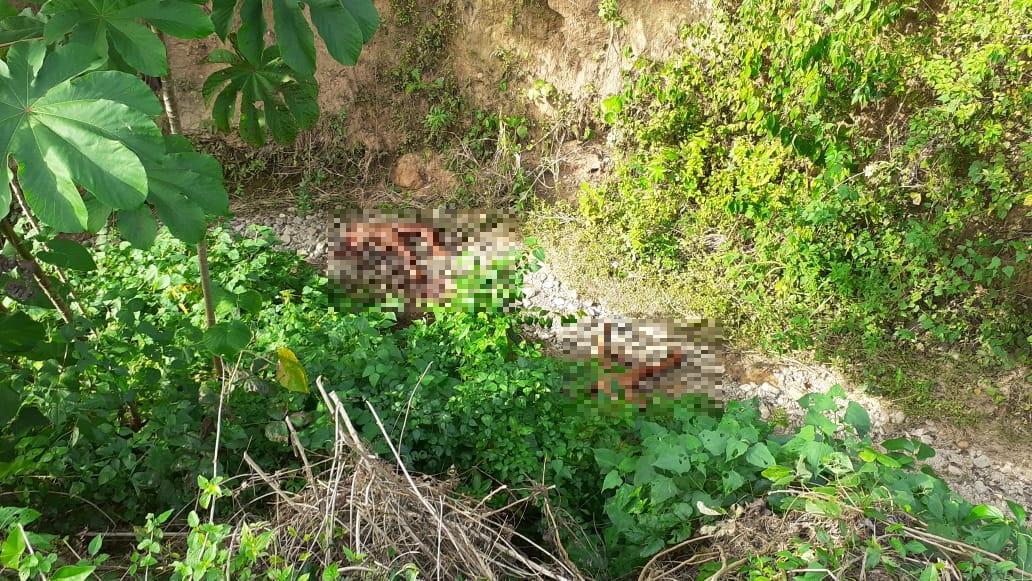 Dantesco: decapitadas y mutiladas dejaron a dos mujeres en El Progreso, Yoro