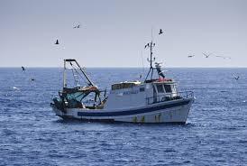 Decomisan más de 30 mil libras de pescado ilegal a embarcación extranjera en el mar caribe