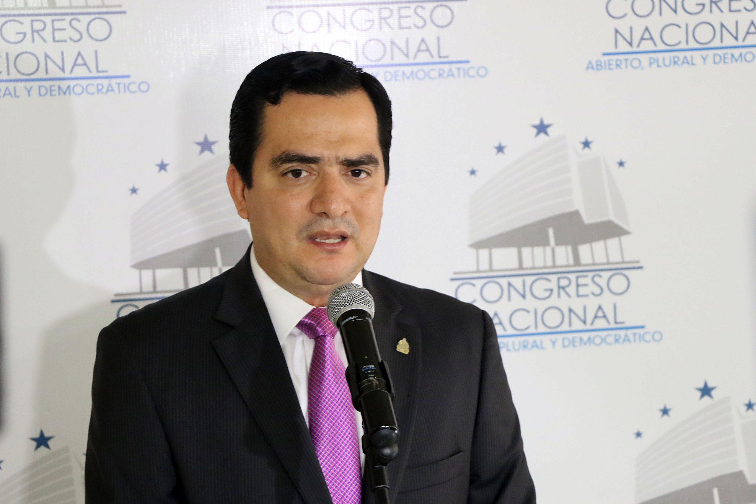 Diputado Mario Pérez.