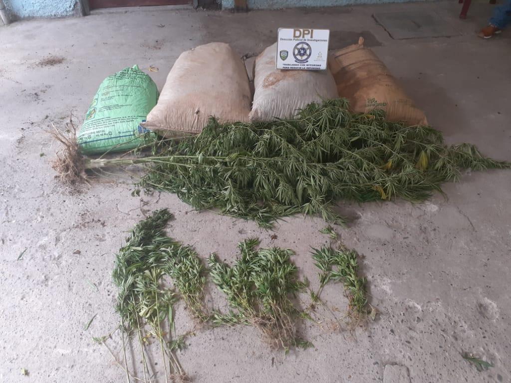 Arrestan a hondureño en posesión de cinco sacos conteniendo supuesta marihuana