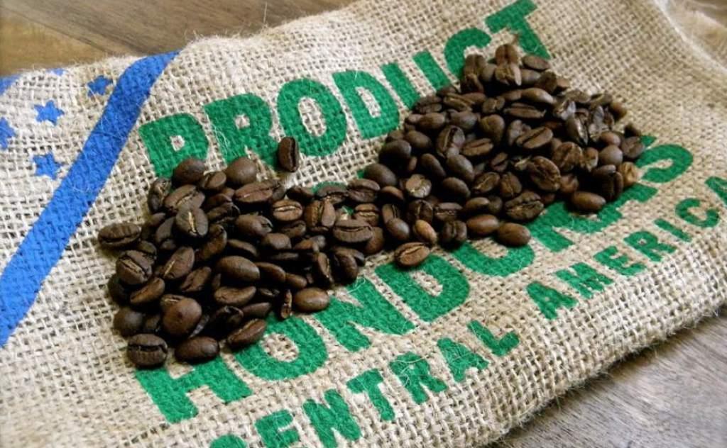 Exportaciones de café hondureño suben 13 % y suman 101.2 millones de dólares