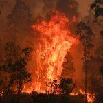 Incendio Australia