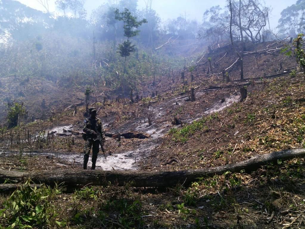 17 incendios forestales con 120 hectáreas de bosque afectadas se registran en el país