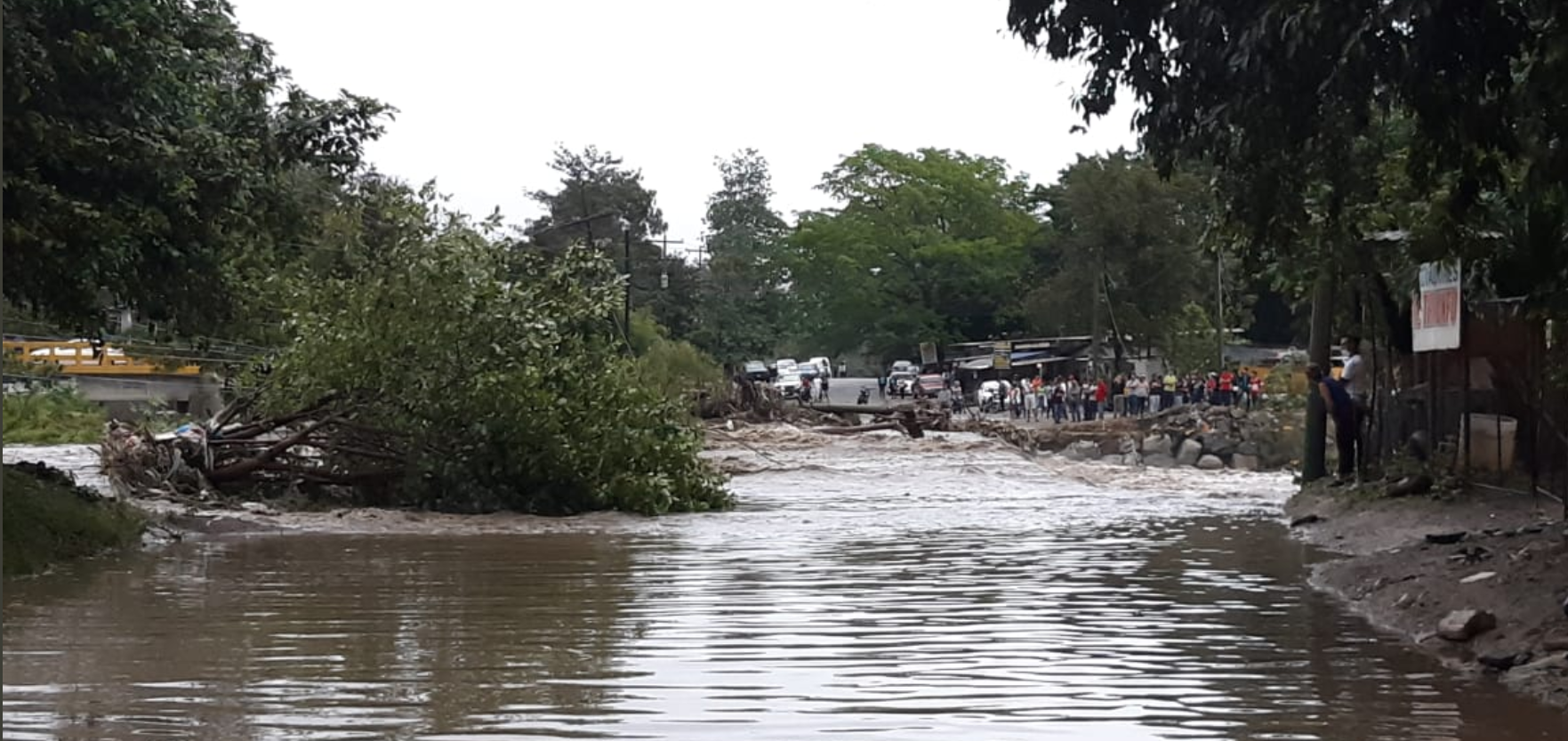 Se reportan varios sectores inundados por las lluvias en San Pedro Sula