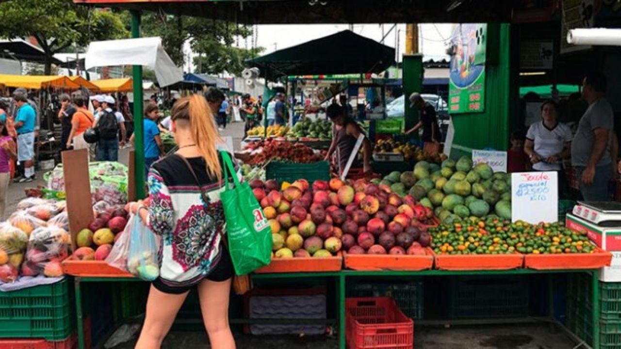 Colegio de Economistas propone subsidiar canasta básica a 5.7 millones de hondureños