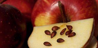 niña muere manzana