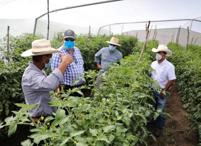 Mejorará la economía en Honduras.