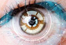 Crean ojo artificial,