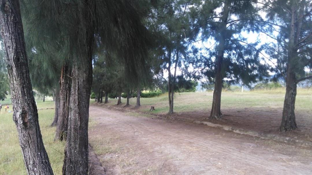 Masivo entierro por covid-19 en cementerio Jardines de los Ángeles, Honduras