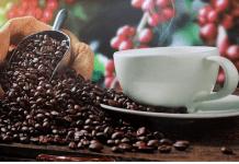cafe hondureño