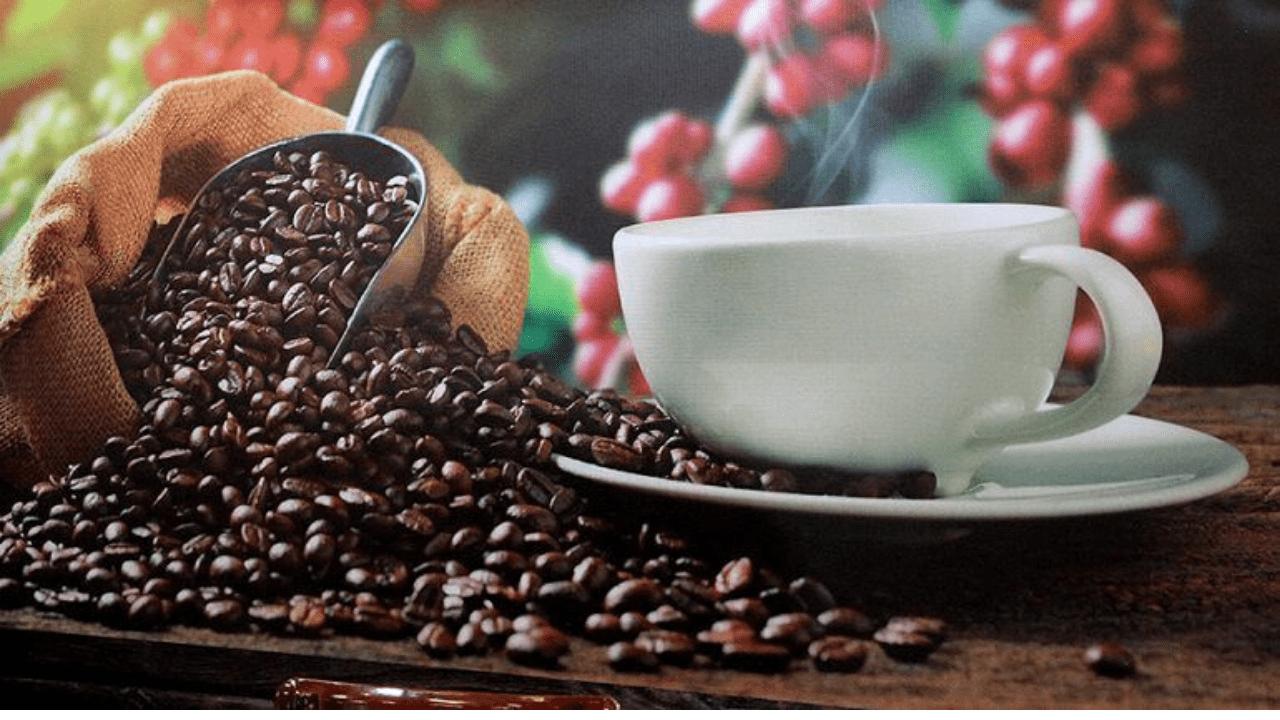 Honduras es el quinto país productor de café en el mundo