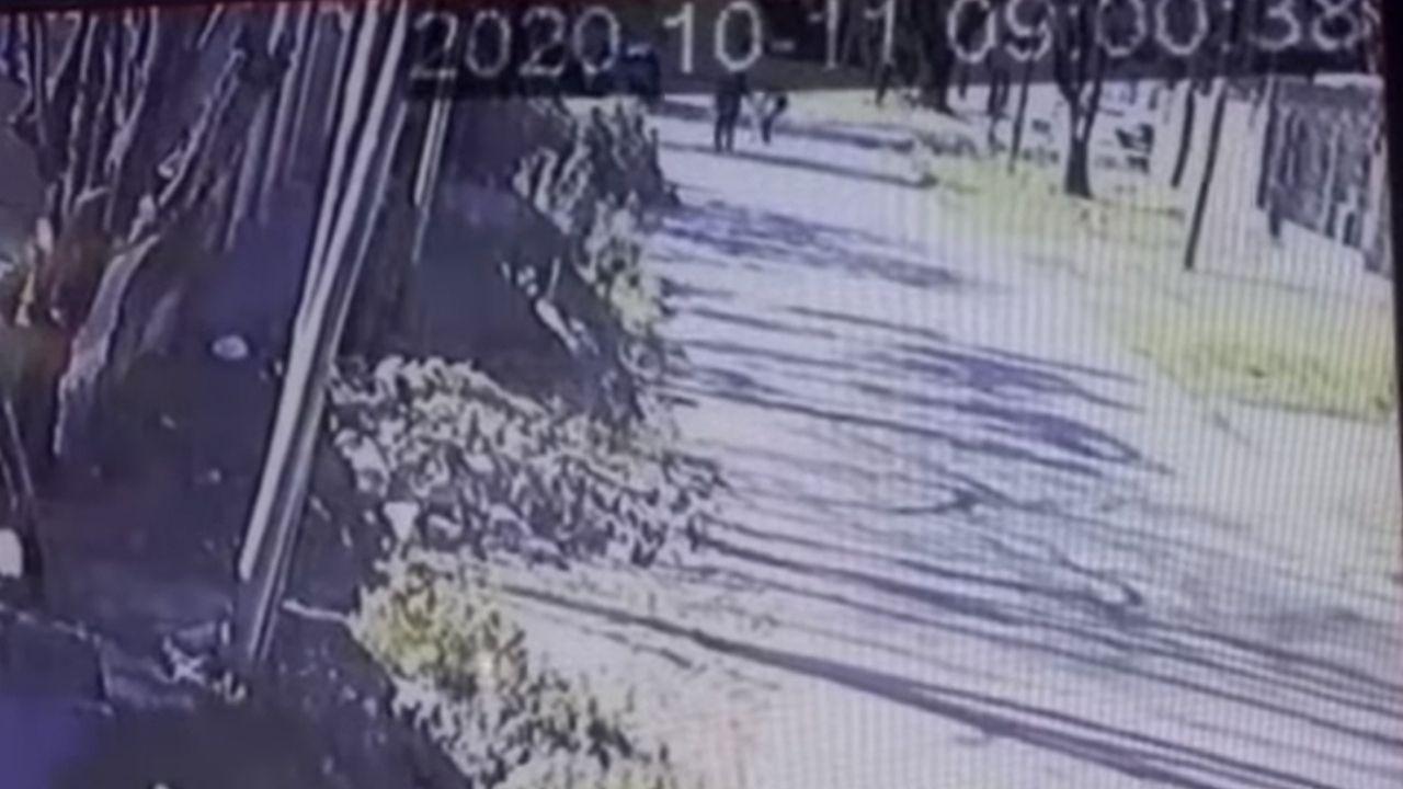 Vídeo muestra cómo un hombre le arrebató la pistola y mató al ladrón que intentó asaltarlo