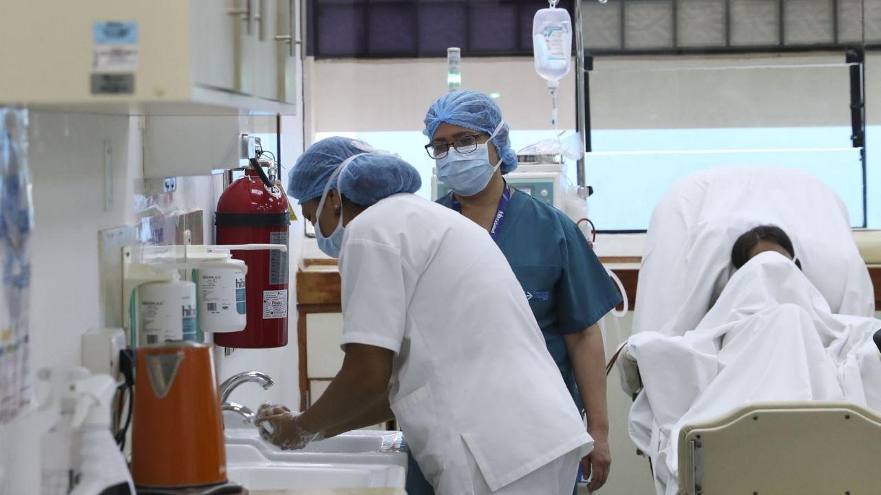 El covid no es una pandemia sino una sindemia, científicos explican qué significa