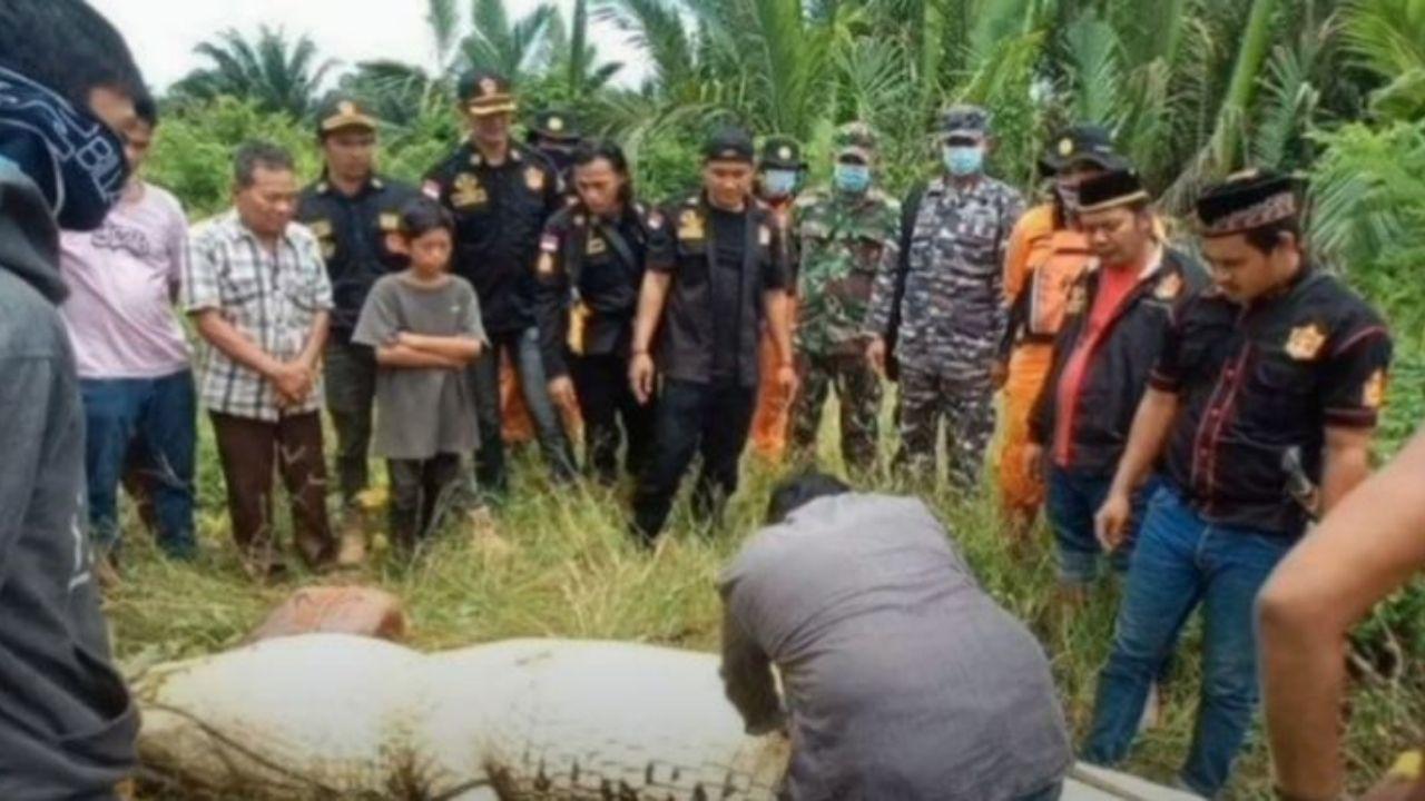 Cocodrilo de 7 metros se traga a niño de 8 años y extraen su cadáver intacto del estómago del animal