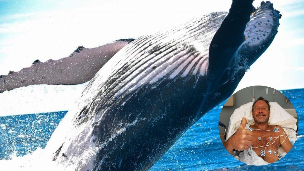 ´Estuve dentro de su boca durante 40 segundos´: pescador es tragado por una ballena y luego es escupido sano y salvo