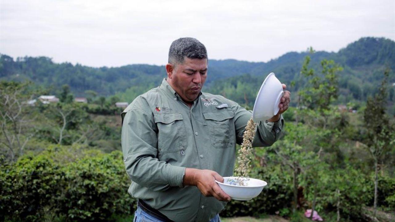 En los primeros 5 meses de 2021, Honduras reporta alza en las exportaciones e importaciones