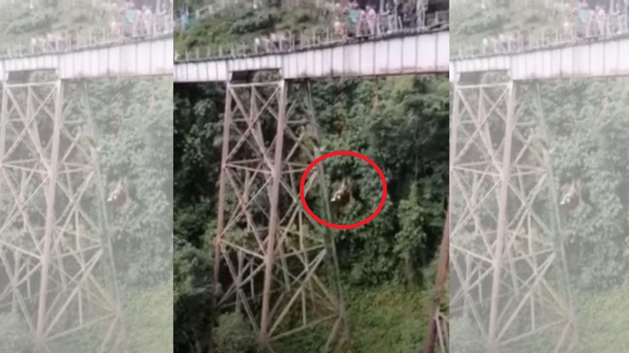 Joven muere tras saltar de un puente para practicar bungee jumping