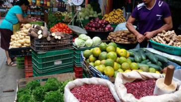 Productos alimenticios
