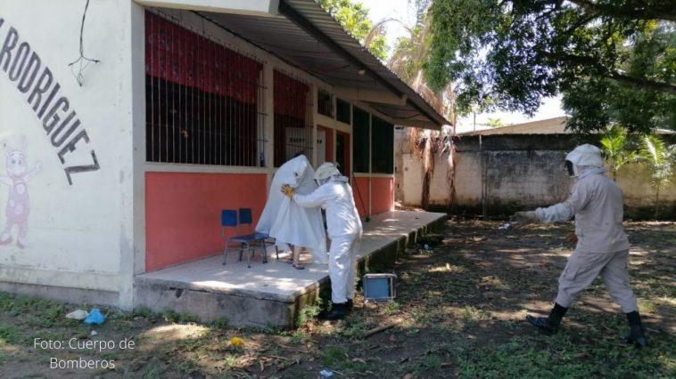 niños de jardin escolar fueron rescatados de enjambre de abejas