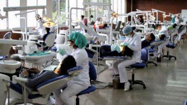 estudiantes de odontología