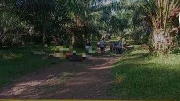 los cuerpos de las víctimas quedaron tirados en el suelo en medio de una finca de palma africana en tocoa, colon, honduras