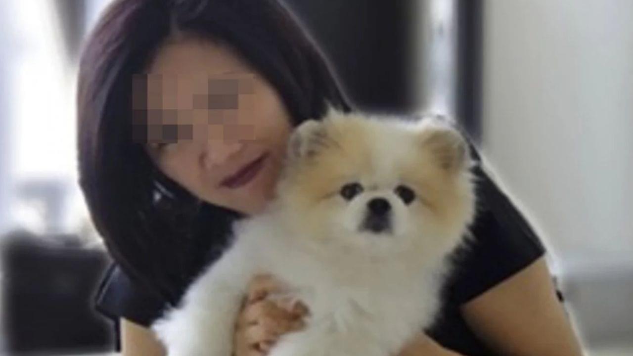 Se trata de un perrito de 17 años, cuya dueña fue hospitalizada a finales de febrero, luego de dar positivo por covid-19