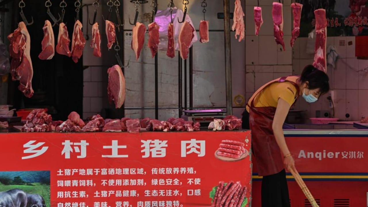 La determinación fue tomada por autoridades locales y el consumo de animales salvajes queda prohibido por los siguientes cinco años.