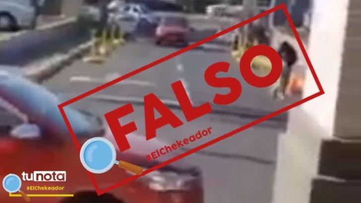 El Chekeador: Vídeo de ataque de avispones gigantes no fue en Estados Unidos sino en Nicaragua