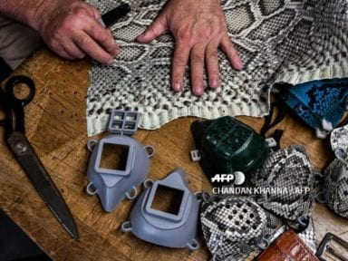 Estadounidense hace mascarillas con piel de iguanas y pitón para protegerse del covid-19