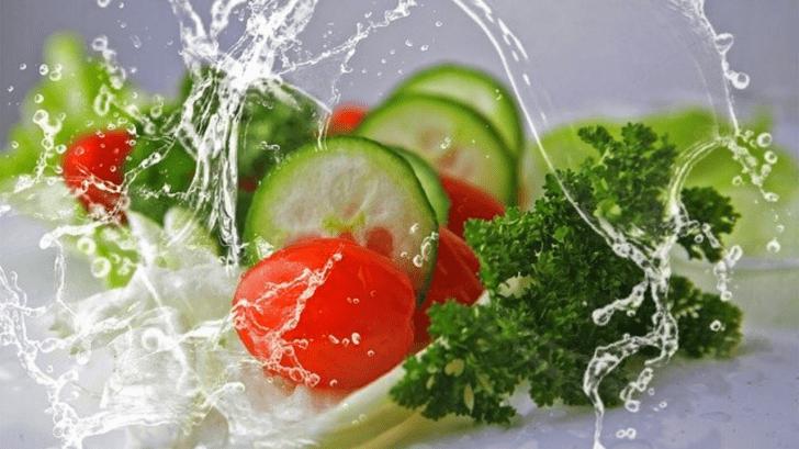 GABA: guía nutricional creada en Honduras que promete ser la mejor elección para cuidar tu alimentación