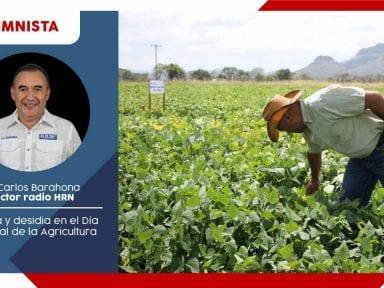 Miopía y desidia en el Día Mundial de la Agricultura