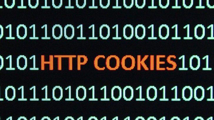 Militantes lanzan ofensiva contra el 'terror' de las cookies en internet