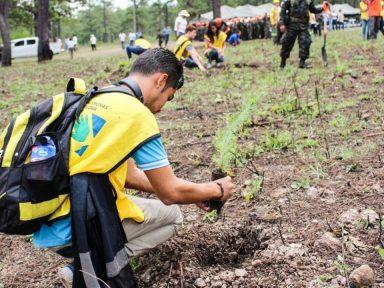 Televicentro y Emisoras Unidas lanzan Raeeman, la primera película hondureña a favor del medio ambiente