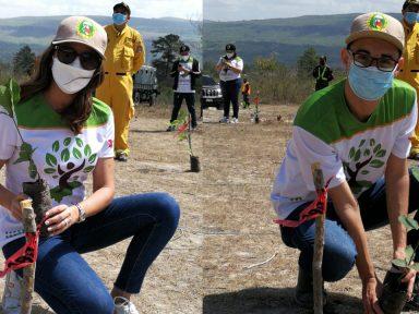 PlantatónHN 2021: Televicentro y Emisoras Unidas llaman a reforestar a Honduras