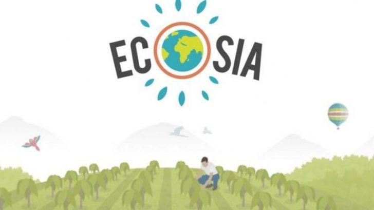 Ecosia: un navegador ecológico que planta arboles por cada búsqueda que hagan sus usuarios