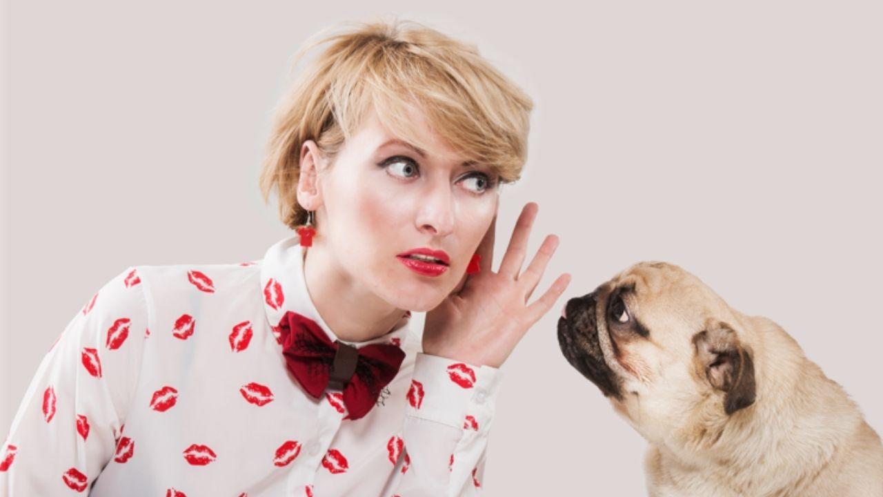 Sin duda alguna todos los que tienen una mascota, más de una vez han intentado interactuar con ella, pero ¿realmente sabemos cómo comunicarnos?
