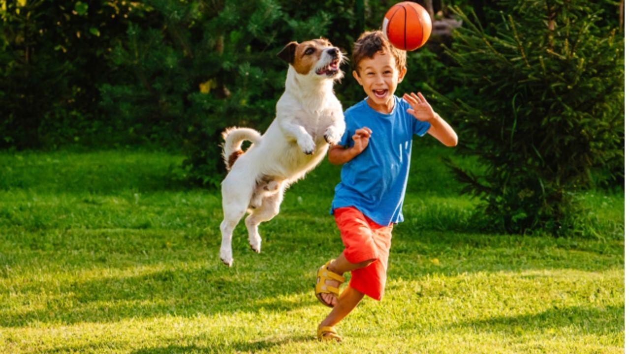 La compañía de una mascota ayuda al desarrollo social de cada ser humano, pues al compartir, abrazar, ayudará a conocer un nuevo mundo