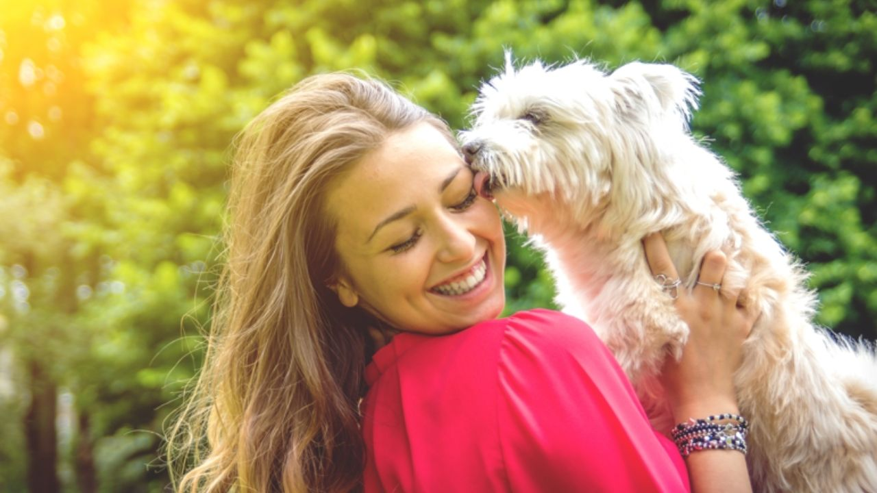 A lo largo de la vida, se ha dicho que el perro es el mejor amigo del hombre y con el tiempo se ha demostrado el fuerte vínculo
