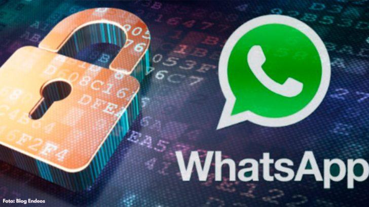 ¿Empleados de WhatsApp leen las conversaciones?, esto dice un informe
