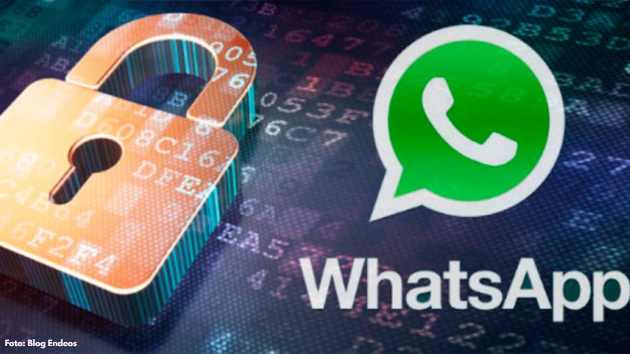 ¡Tienes que verlo! Esto reveló un informe de una agencia independiente de noticias de Estados Unidos sobre la privacidad de WhatsApp