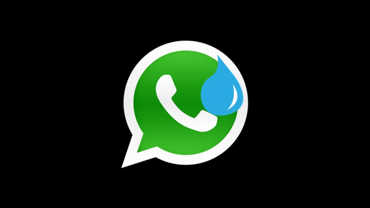 ¿Podrás seguir usando WhatsApp sin aceptar sus nuevas políticas de privacidad?