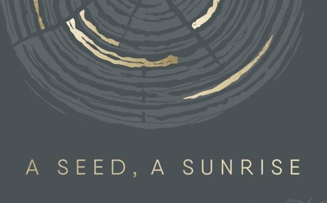 A Seed, A Sunrise: Advent to Christmas Songs