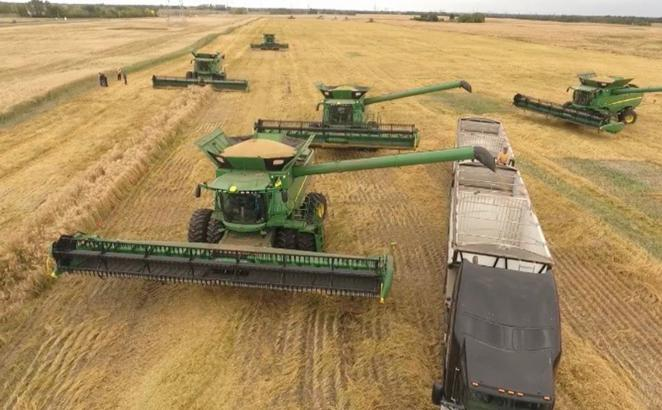 Sharing Harvest Bounty: 'A Conduit of Mercy'