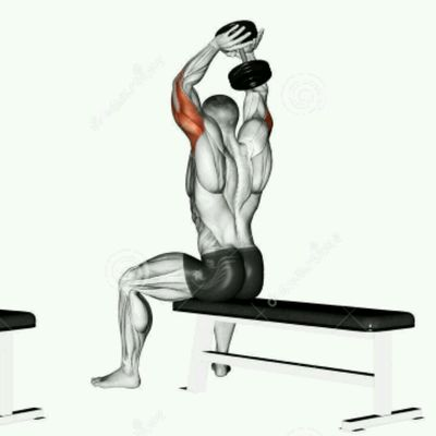 Dumbbell Behind Head