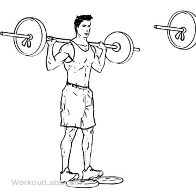 How to do: Calf Raises With Dumbells - Step 1