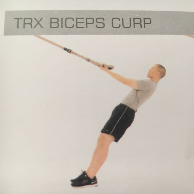 How to do: TRX Biceps Curl - Step 1