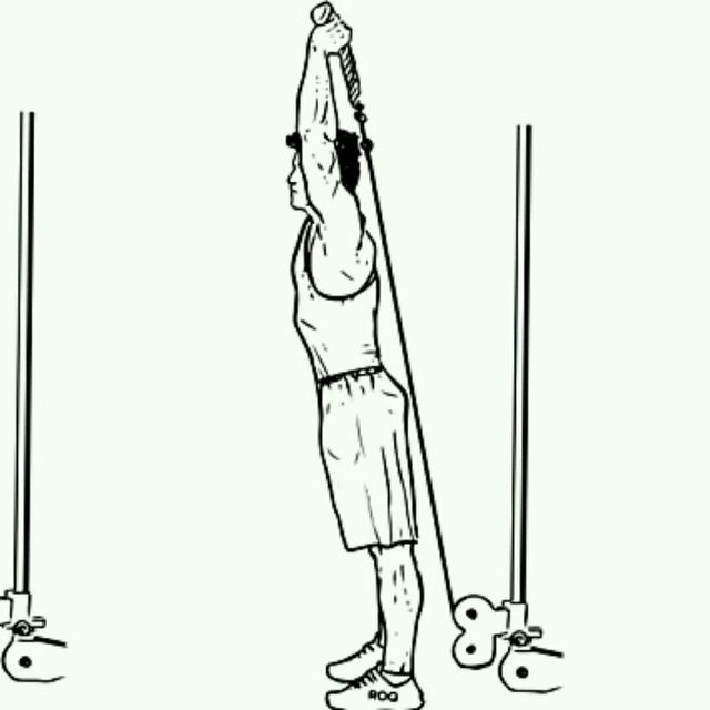 How to do: CM Low Pulley Two Arms Overhead Triceps Extensions - Step 2
