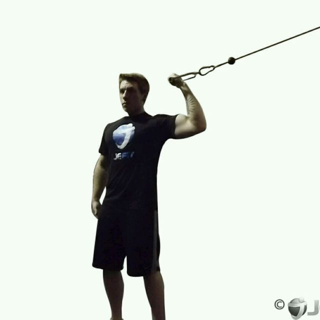 How to do: CM Standing One Bicep Arm High Curl - Step 2