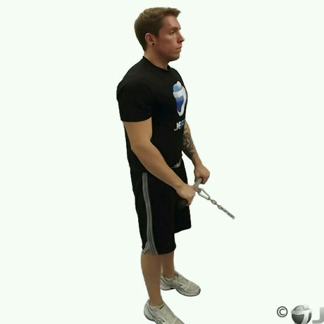 How to do: CM Standing Reverse Grip Bicep Curls - Step 1
